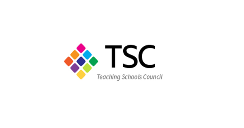 What is the Teaching Schools Council and how does it work?