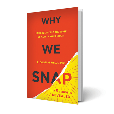 Why-we-snap