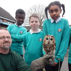 Primary school pupils adopt a rescue owl